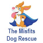 The Misfits Dog Rescue