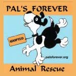 Pals Forever Animal Rescue